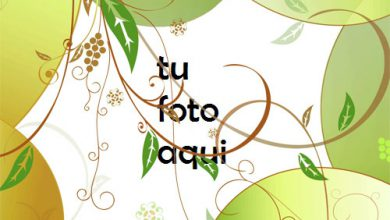 Photo of Gota De Jugo Marco Para Foto