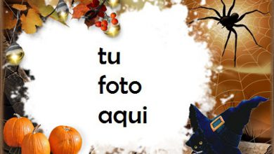 Photo of Halloween Con Gatito Negro Marco Para Foto