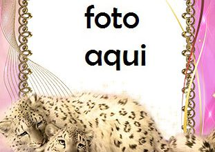 Photo of Marco Para Foto Cuadro Con Leopardos De Las Nieves Amor Marcos
