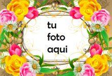 Eres Una Rosa En Medio De Flores Marco Para Foto 220x150 - Eres Una Rosa En Medio De Flores Marco Para Foto