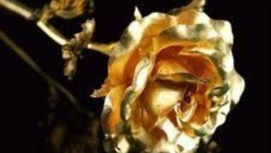 Escribir En Foto Imagen de flor dorada 1 390x220 - Escribir En Foto Imagen de flor dorada