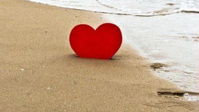 Escribir En Foto corazones con nombres 390x220 - Escribir En Foto corazones con nombres