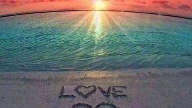 Escribir En Foto corazones para facebook 390x220 - Escribir En Foto corazones para facebook