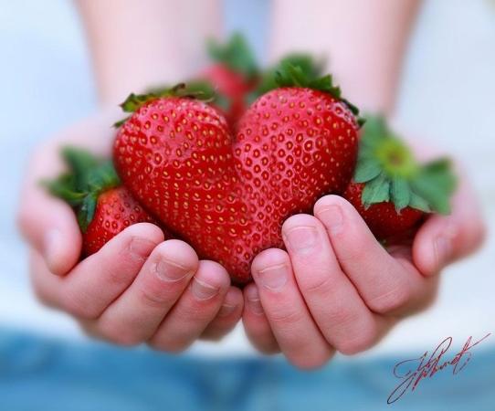 Escribir En Foto rosas y corazones - Escribir En Foto rosas y corazones