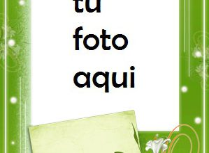 Flores Y Rosas Verdes Marco Para Foto 299x220 - Flores Y Rosas Verdes Marco Para Foto