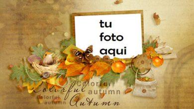 Marco Para Foto Otoño colorido Otoño Marcos 390x220 - Marco Para Foto Otoño colorido Otoño Marcos