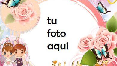 Mariposas Y Matrimonio Marco Para Foto 390x220 - Mariposas Y Matrimonio Marco Para Foto