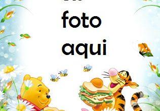 Oso De Peluche Y Amigos Marcos Para Foto 316x220 - Oso De Peluche Y Amigos Marcos Para Foto