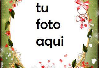 Románticas flores rojas para los seres queridos Marco Para Foto 320x220 - Románticas flores rojas para los seres queridos Marco Para Foto