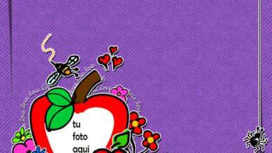 Te Amo Página De Chatarra Marco Para Foto 390x220 - Te Amo Página De Chatarra Marco Para Foto