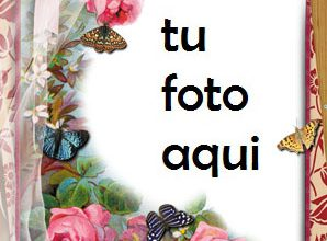 Un Paraíso De Flores Rojas Marco Para Foto 298x220 - Un Paraíso De Flores Rojas Marco Para Foto