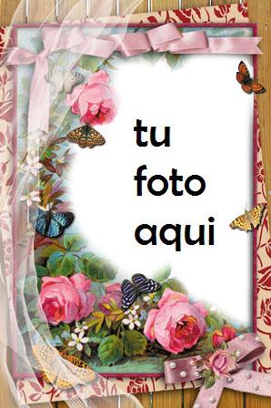 Un Paraíso De Flores Rojas Marco Para Foto - Un Paraíso De Flores Rojas Marco Para Foto