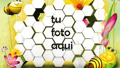 Marco Para Foto Era De Hielo Niños Marcos 390x220 - Marco Para Foto Era De Hielo Niños Marcos