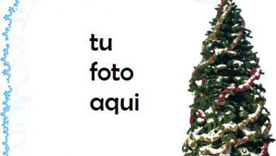 Marco Para Foto Noche Antes De Navidad En Estilo Retro Invierno Marcos 1 390x220 - Marco Para Foto Noche Antes De Navidad En Estilo Retro Invierno Marcos