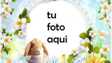 Marco Para Foto Ten Una Pascua Feliz Y Lupulada Primavera Marcos 390x220 - Marco Para Foto Ten Una Pascua Feliz Y Lupulada Primavera Marcos
