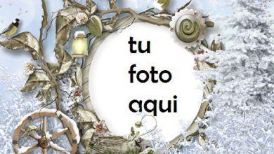 Marco Para Foto Todo Alrededor En La Nieve Invierno Marcos 1 390x220 - Marco Para Foto Todo Alrededor En La Nieve Invierno Marcos