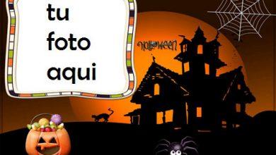 marco para foto se acerca halloween 2 halloween marcos 390x220 - marco para foto se acerca halloween 2 halloween marcos