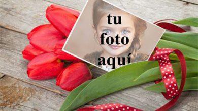 Un ramo de rosas para San Valentín Foto Marcos 390x220 - Un ramo de rosas para San Valentín Foto Marcos