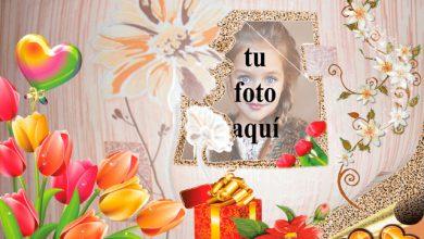 Marco colgado en la pared de flores foto marcos 390x220 - Marco colgado en la pared de flores foto marcos