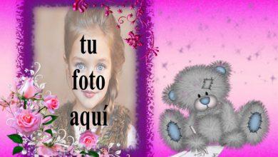 el romantico marco de fotos de juguete de oso de peluche 390x220 - el romántico marco de fotos de juguete de oso de peluche