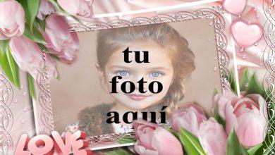 marco de fotos rosa decorado hermosas flores rosadas 390x220 - marco de fotos rosa decorado hermosas flores rosadas