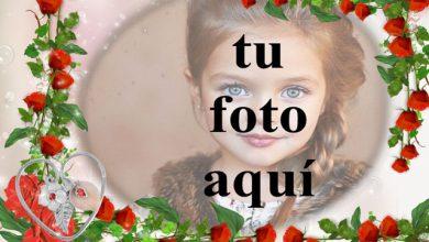 romantico marco de fotos de flores rojas decorado con amor 390x220 - romántico marco de fotos de flores rojas decorado con amor