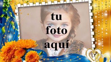 rosas naranjas con marco de fotos de fondo dorado 390x220 - rosas naranjas con marco de fotos de fondo dorado