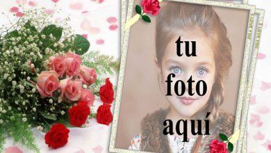 Marco de fotos de ramo de rosas rojas con marco romantico 390x220 - Marco de fotos de ramo de rosas rojas con marco romántico