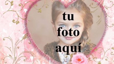 corazon rosa decorado con marco de fotos de raices doradas 390x220 - corazón rosa decorado con marco de fotos de raíces doradas