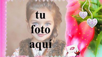 marco de fotos de amor rojo con flor romantica 390x220 - marco de fotos de amor rojo con flor romántica