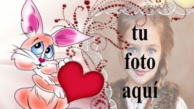 marco de fotos de conejito de amor con marco decorativo 390x220 - marco de fotos de conejito de amor con marco decorativo
