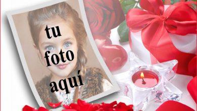 marco de fotos romantico de rosas rojas virgenes 390x220 - marco de fotos romántico de rosas rojas vírgenes