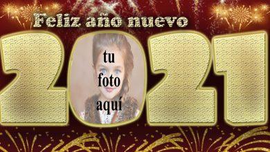 2021 feliz ano nuevo marco de fotos de fiesta de fuegos artificiales 390x220 - 2021 feliz año nuevo marco de fotos de fiesta de fuegos artificiales